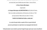 MOSTRA MICOLOGICA A TURSI, sabato 24 e domenica 25 ottobre
