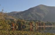 Poetare d'autunno