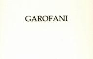 """""""Garofani"""" dell'attore Antonio Petrocelli è un memorabile debutto nella poesia, dolce e potente. Da acquistare, leggere e regalare"""