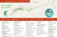 Realizzati a Tursi oltre 60 alberi di Natale in pallet da associazioni e attività commerciali