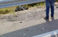 Giovane centauro muore tragicamente, domenica pomeriggio a Tursi, dopo il motoraduno. Mario Vassallo, 33 anni, era di Nova Siri
