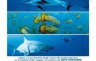 """A Paterno (PZ), nell'Istituto Comprensivo, venerdì 25 maggio, alle ore  9,30,  proiezione  del documentario """"La vita negli oceani""""  di Jacques Perrin e Jacques Cluzaud, nella rassegna """"Film Ambiente e Territori"""""""